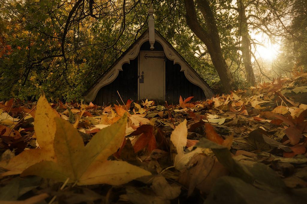 Autumnus