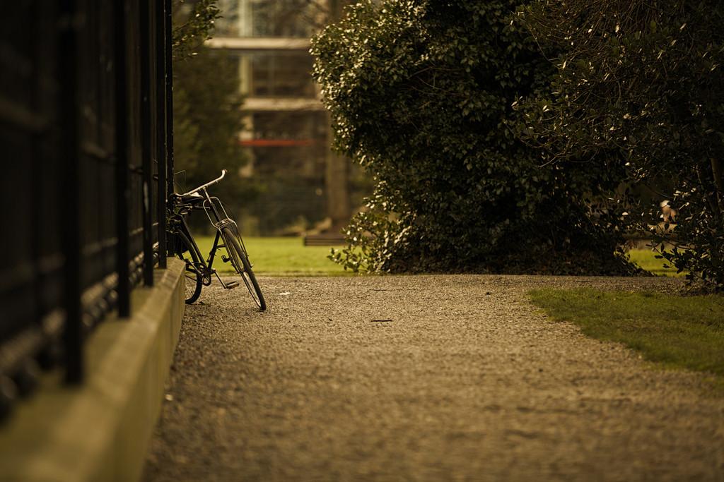 Bike at Iveagh Gardens
